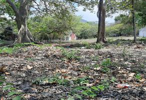 Foto de terreno habitacional en venta en señor del pozo , tuxtla gutiérrez centro, tuxtla gutiérrez, chiapas, 0 No. 01