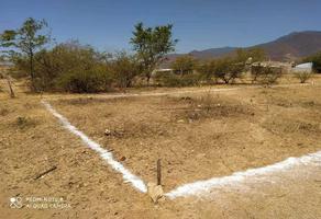 Foto de terreno habitacional en venta en  , señorio san agustín, san agustín yatareni, oaxaca, 0 No. 01