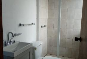 Foto de departamento en renta en seybaplaya 27, pedregal de san nicolás 1a sección, tlalpan, df / cdmx, 11654451 No. 04