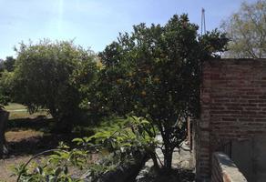 Foto de terreno habitacional en venta en sidar , san lorenzo tlalmimilolpan, teotihuacán, méxico, 0 No. 01