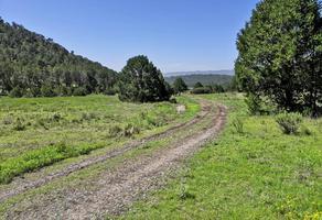 Foto de terreno habitacional en venta en sierra escondida , los llanos, arteaga, coahuila de zaragoza, 0 No. 01