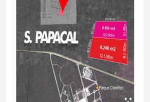 Foto de terreno comercial en venta en  , sierra papacal, mérida, yucatán, 3976237 No. 01