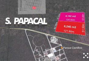 Foto de terreno comercial en venta en  , sierra papacal, mérida, yucatán, 0 No. 01