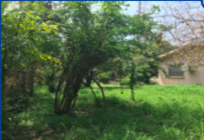 Foto de casa en venta en simon bolivar , montemorelos centro, montemorelos, nuevo león, 0 No. 01