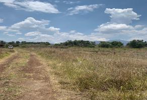Foto de terreno habitacional en venta en  , simpanio norte ii, morelia, michoacán de ocampo, 18372428 No. 01