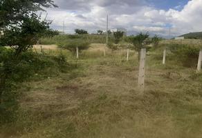 Foto de terreno habitacional en venta en sin calle lote 7 , lomas de san javier, santa cruz xoxocotlán, oaxaca, 0 No. 01