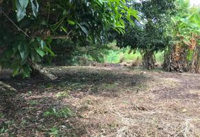 Foto de terreno habitacional en venta en sin nombre 00, playa de vacas, medellín, veracruz de ignacio de la llave, 0 No. 01