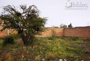 Foto de terreno habitacional en venta en sin nombre 1, valle verde sur, durango, durango, 0 No. 01