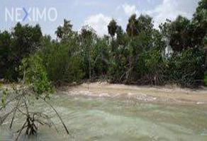 Foto de terreno comercial en venta en sin nombre 62, 5 de mayo, bacalar, quintana roo, 6034059 No. 01
