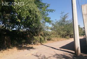 Foto de terreno habitacional en venta en sin nombre , ahuehuetzingo, puente de ixtla, morelos, 0 No. 01