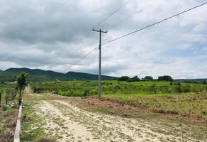 Foto de terreno habitacional en venta en sin nombre , alianza campesina, tuxtla gutiérrez, chiapas, 0 No. 01