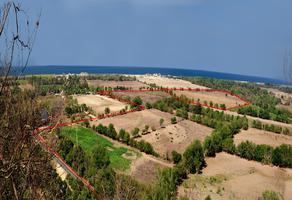 Foto de terreno habitacional en venta en sin nombre , bajos de chila, san pedro mixtepec dto. 22, oaxaca, 0 No. 01