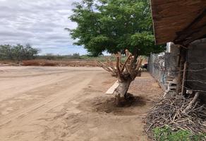 Foto de terreno habitacional en venta en sin nombre , diana laura, la paz, baja california sur, 16303495 No. 01