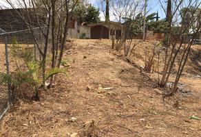 Foto de terreno habitacional en venta en sin nombre , donaji, oaxaca de juárez, oaxaca, 14959547 No. 01