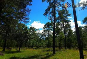 Foto de terreno comercial en venta en sin nombre , fraccionamiento paraíso de la sierra, durango, durango, 20169936 No. 01