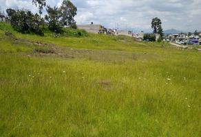 Foto de terreno habitacional en venta en sin nombre , la cabecera, almoloya de juárez, méxico, 16810983 No. 01