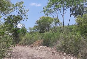 Foto de terreno habitacional en venta en sin nombre , lazarillos de abajo, allende, nuevo león, 5883956 No. 01