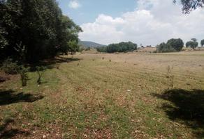 Foto de terreno habitacional en venta en sin nombre , ñado buenavista, aculco, méxico, 15658542 No. 01