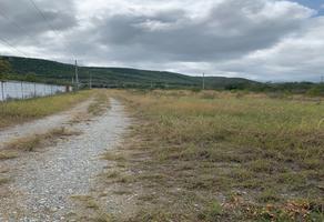 Foto de terreno habitacional en venta en sin nombre , rancho escondido, montemorelos, nuevo león, 0 No. 01