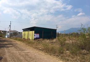 Foto de terreno habitacional en venta en sin nombre , san sebastián etla, san pablo etla, oaxaca, 0 No. 01