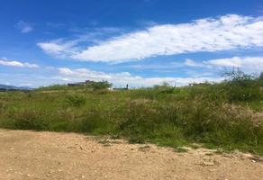 Foto de terreno habitacional en venta en sin nombre , santiago etla, san lorenzo cacaotepec, oaxaca, 16728919 No. 01