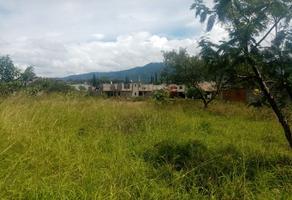 Foto de terreno comercial en venta en sin nombre , santo domingo barrio alto, villa de etla, oaxaca, 0 No. 01