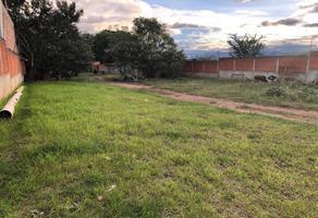 Foto de terreno habitacional en venta en sin nombre sin numero, san agustin yatareni, san agustín yatareni, oaxaca, 0 No. 01