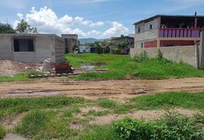 Foto de terreno habitacional en venta en sin nombre s/n , xoxocotlan, santa cruz xoxocotlán, oaxaca, 0 No. 01