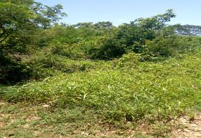 Foto de terreno industrial en venta en sin numero , chichi suárez, mérida, yucatán, 8122933 No. 01
