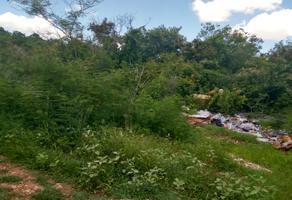 Foto de terreno industrial en venta en sin numero , sierra papacal, mérida, yucatán, 8122611 No. 01