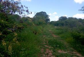 Foto de terreno industrial en venta en sin numero , yaxche, mérida, yucatán, 8122928 No. 01