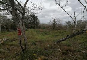 Foto de terreno habitacional en venta en  , sitpach, mérida, yucatán, 12270235 No. 01