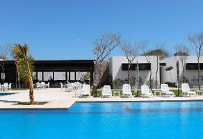 Foto de terreno habitacional en venta en  , sitpach, mérida, yucatán, 0 No. 02