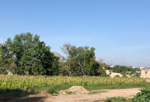 Foto de terreno industrial en venta en sn 0, san agustin, tlajomulco de zúñiga, jalisco, 5635226 No. 01