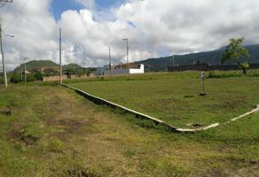 Foto de terreno habitacional en venta en s/n 1, el astillero, atlatlahucan, morelos, 0 No. 01