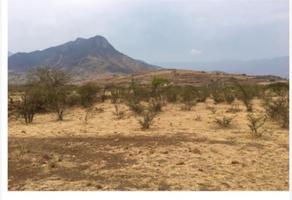 Foto de terreno habitacional en venta en sn 1, tlacolula de matamoros centro, tlacolula de matamoros, oaxaca, 15261353 No. 01