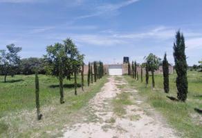 Foto de terreno habitacional en venta en sn , 16 de septiembre, durango, durango, 0 No. 01