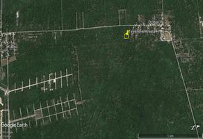 Foto de terreno industrial en venta en s/n 37379, komchen, mérida, yucatán, 8450743 No. 01