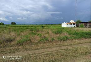 Foto de terreno habitacional en venta en sn , agua blanca, santa maría tonameca, oaxaca, 17641533 No. 01