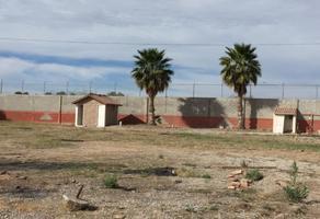 Foto de terreno habitacional en renta en s/n , albia, torreón, coahuila de zaragoza, 12159754 No. 01