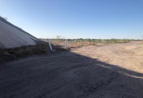 Foto de terreno habitacional en venta en s/n , albia, torreón, coahuila de zaragoza, 13625185 No. 01