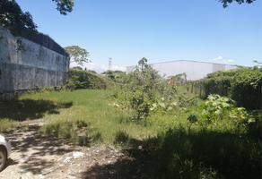 Foto de terreno habitacional en venta en sn , amatlan de los reyes, amatlán de los reyes, veracruz de ignacio de la llave, 18300944 No. 01
