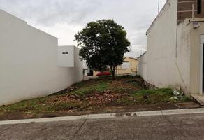 Foto de terreno habitacional en venta en sn , ánimas  marqueza, xalapa, veracruz de ignacio de la llave, 19264684 No. 01