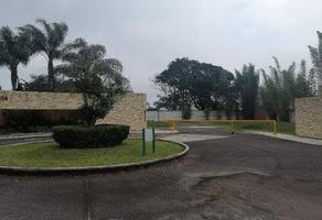 Foto de terreno habitacional en venta en sn , ánimas  marqueza, xalapa, veracruz de ignacio de la llave, 19264688 No. 01