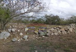 Foto de terreno habitacional en venta en s/n , baca, baca, yucatán, 0 No. 01