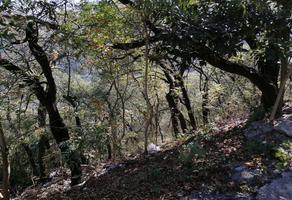 Foto de terreno habitacional en venta en s/n , bosques de san ángel sector palmillas, san pedro garza garcía, nuevo león, 19438266 No. 01