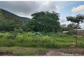 Foto de terreno habitacional en venta en sn , brisas de san juan, tepic, nayarit, 0 No. 01