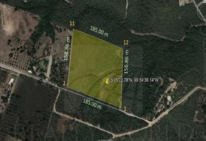 Foto de terreno comercial en venta en s/n , calles, montemorelos, nuevo león, 18182649 No. 01