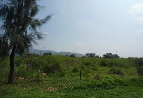 Foto de terreno comercial en venta en s/n , campo sur, tlajomulco de zúñiga, jalisco, 6361466 No. 01