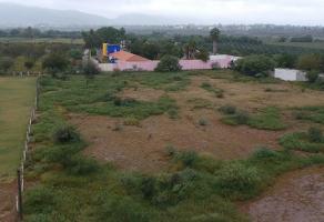 Foto de terreno habitacional en venta en s/n , carlos real (san carlos), lerdo, durango, 5952163 No. 01